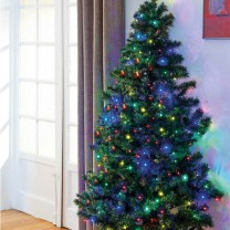 Sapin Magic gain de place