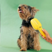 Tuyau cassette easy roll acheter jardin l 39 homme moderne - Canisette pour chien ...