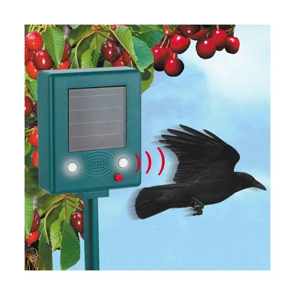 repousse oiseaux solaire acheter outils du jardin. Black Bedroom Furniture Sets. Home Design Ideas