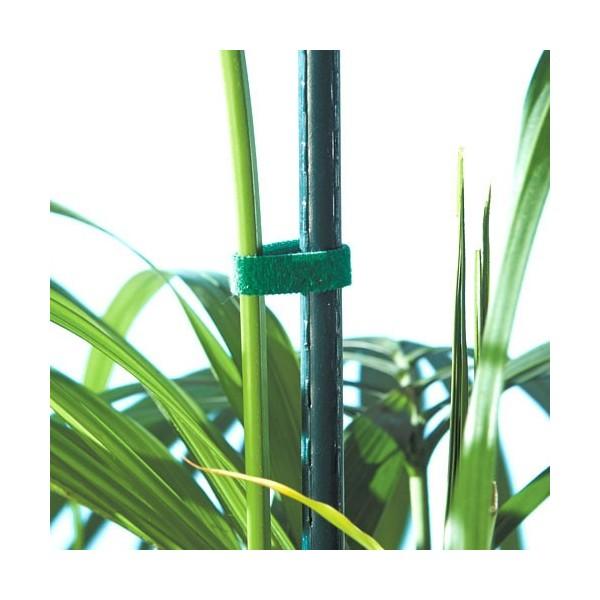 Ruban auto agrippant pour plantes acheter jardin l for Destockage plantes jardin
