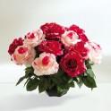 Le bouquet de 18 roses éternelles