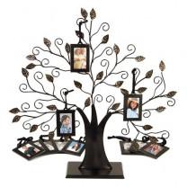 Cadre arbre généalogique