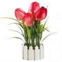 Le bouquet de tulipes éternelles