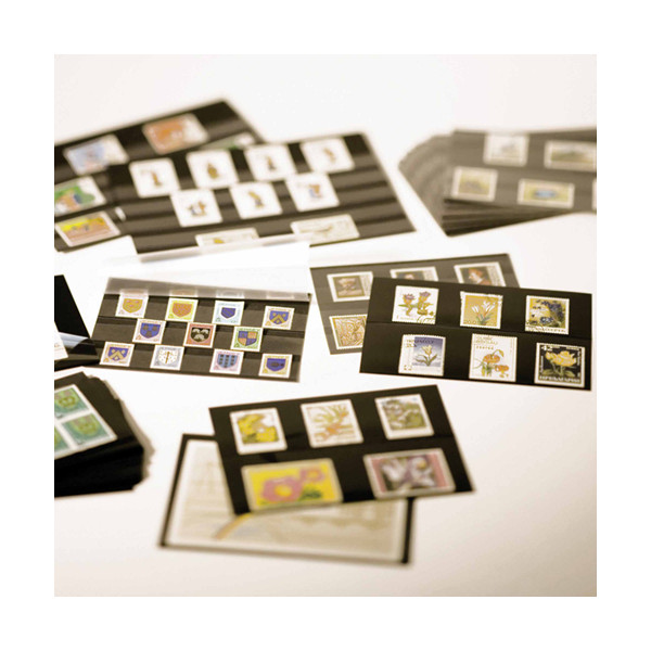 Cartes de rangement 158 x 113 mm