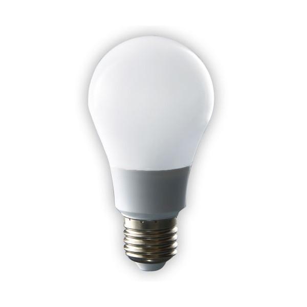 ampoule led 300 acheter eclairage lectricit l. Black Bedroom Furniture Sets. Home Design Ideas