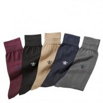 Chaussettes Fil d'Écosse Pierre Clarence - les 5 paires