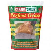 Gazon Canada «Green»®